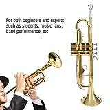 Immagine 1 b tromba piatta in ottone