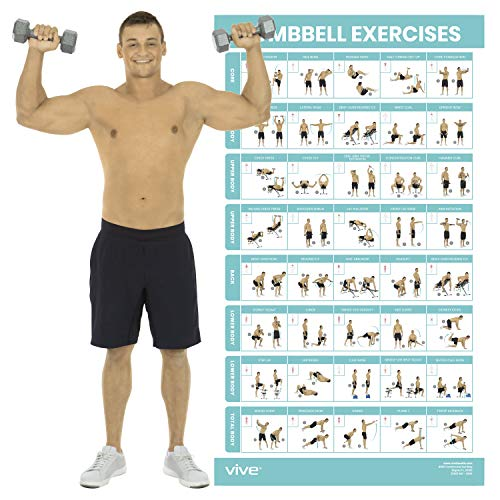 """Vive Dumbbell Exercise Poster - Home Gym Workout for Upper, Lower, Full Body - Laminated Bodyweight Chart for Back, Arm, Core and Legs - Free Weight Building Guide For Men, Women, Elderly (30"""" x 17"""")"""