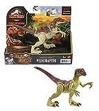 Jurassic World Velociraptor fuerza feroz Dinosaurio articulado, figura de juguete para niños (Mattel GWN32)