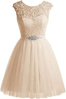 ZYDP Round Neck Sleeveless Beaded Sequined Appliques Short Party Evening Swing Dress (Color : Champagne, Size : US8)