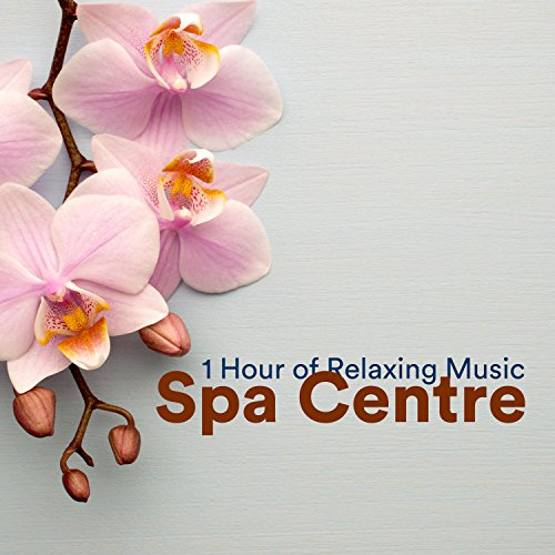 Spa Centre - 1 Hour of Hot Spring Waters and Mud Baths, Turkish bath, Sauna, Pool with jacuzzi