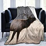 WAWEHOY Bull Elk Yellowstone National Park Wyoming Sherpa Fleece Blanket 50'x40', Plush Throw Blanket for Couch Sofa Bed or Camping Travelling