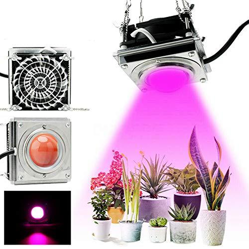 Led Pflanzenlampe Pflanzenlicht Pflanzenleuchte Wachstumslampe Grow Lampe Zimmerpflanzen für Gewächshaus Sämlinge und Sukkulenten Gartenbau