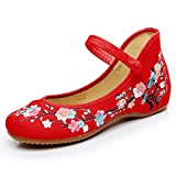 TN TANGNEST Floral Embroidered Shoes for Women Comfortable Round Toe Loafer Casual Ballet Flats Red 39(7)