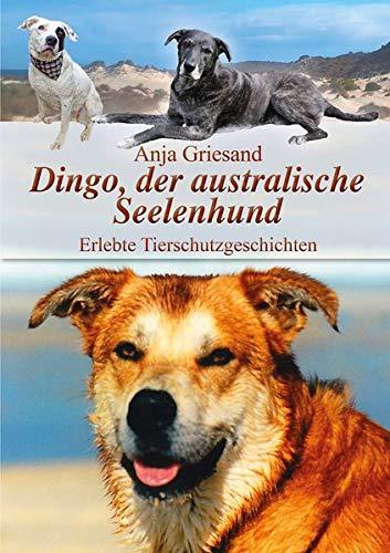 Dingo, der australische Seelenhund: Erlebte Tierschutzgeschichten