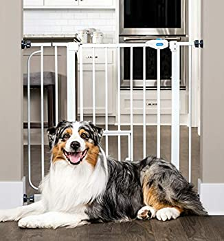 Carlson Extra Wide Walk Through Pet Gate with Small Pet Door Includes 4-Inch Extension Kit Pressure Mount Kit and Wall Mount Kit