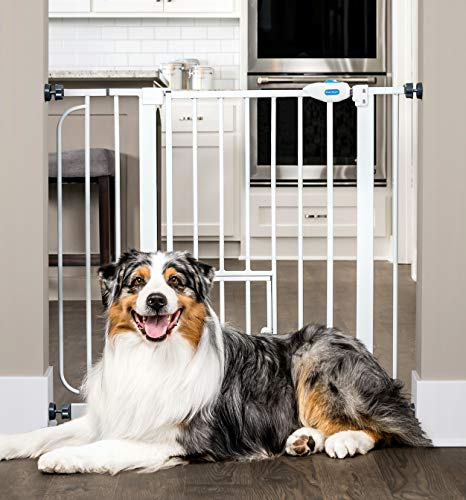 Carlson Extra Wide Walk Through Pet Gate with...