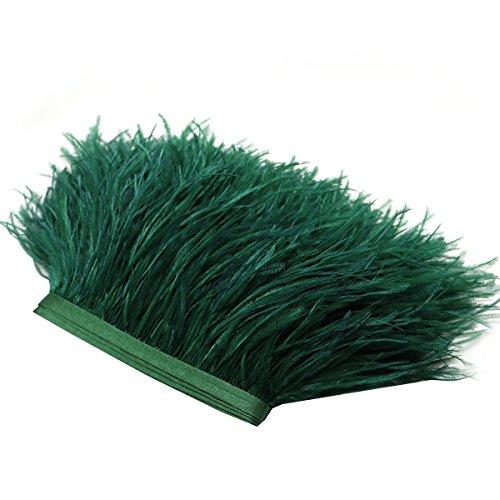 Plumas de Franja ROSENICE pluma del recorte para vestidos de costura Decoración artesanal 2M (Verde)
