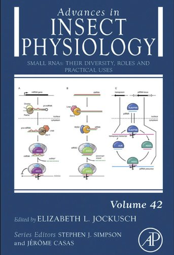 Small RNAs: their diversity, roles and practical uses (ISSN Book 42) (English Edition)
