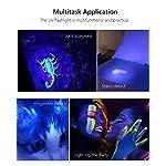 UV Black Light Flashlight, 2 Pack LED UV Torch Mini Blacklight Ultraviolet Pen Lights for Leak and Hotel Inspection - Pet Urine, Bed Bug, Scorpion, Stain, and Dye Detector 10