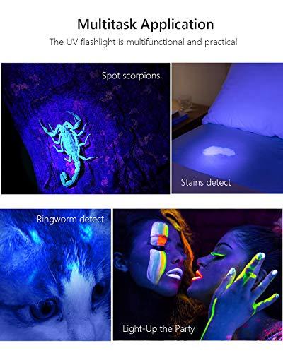 UV Black Light Flashlight, 2 Pack LED UV Torch Mini Blacklight Ultraviolet Pen Lights for Leak and Hotel Inspection - Pet Urine, Bed Bug, Scorpion, Stain, and Dye Detector 3