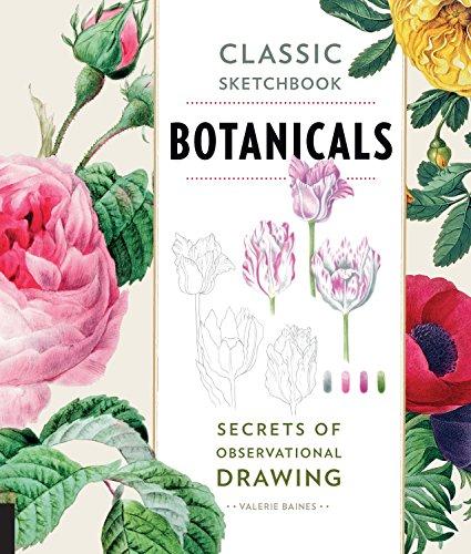 Baines, V: Classic Sketchbook: Botanicals: Secrets of Observational Drawing