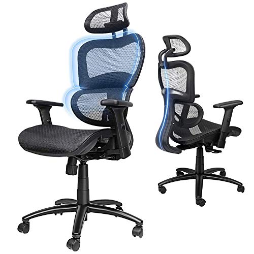Ergousit Ergonomic Office Chair - Breathable Mesh Computer Chair with 3D Lumbar Support and Adjustable Headrest Flexible Armrests, Home Office Desk Chairs, Rolling Swivel Office Chair