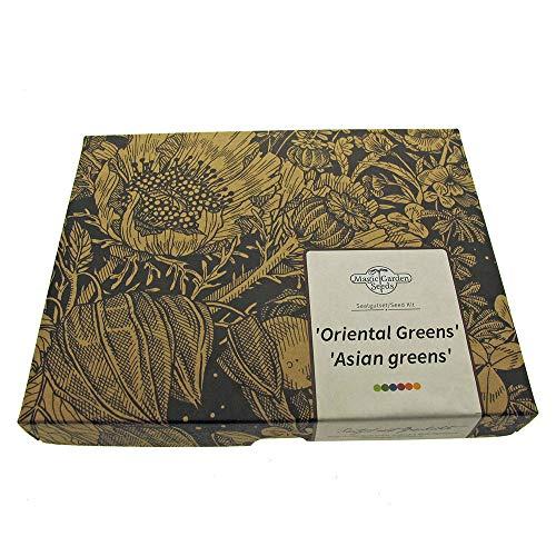 Oriental Greens - Samen-Geschenkset mit 5 asiatischen, sehr gesunden Blattgemüsesorten