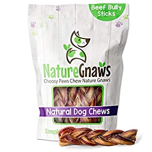 Nature Gnaws Braided Bully Sticks for Dogs – Premium Natural Beef Bones – Long Lasting Dog Chew Treats for Small and Medium Breeds – Rawhide Free – 6 Inch (10 Count)