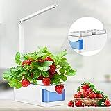 SEAAN Hydroponic-Kit,de cultivo inteligente de hierbas con luces LED para crecimiento de plantas con espectro completo,dos propósitos (lectura e iluminación de plantas) para plantas de interior de la