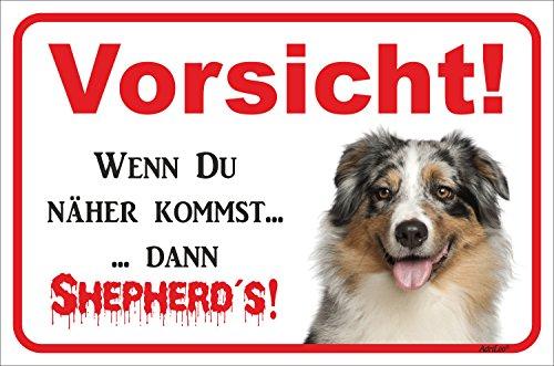 Rainbow-Print Schild - Vorsicht Australian Shepherd - Vorsicht sonst Shepherd´s - Blue-Merle Aussie Hund Warnschild Achtung Türschild (15x20cm)