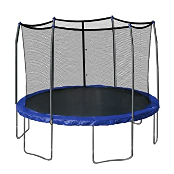 Skywalker Trampolines 12-Feet Round Trampoline and Enclosure with Spring Pad Blue