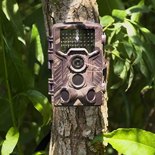Camera di caccia Denver WCM-8010. Fotocamera