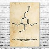 Patent Earth Mescaline Molecule Poster Print, Mescaline Art, Shaman Gift, Peyote Art, Stoner Gift, Hippie Art Print, Head Shop Decor