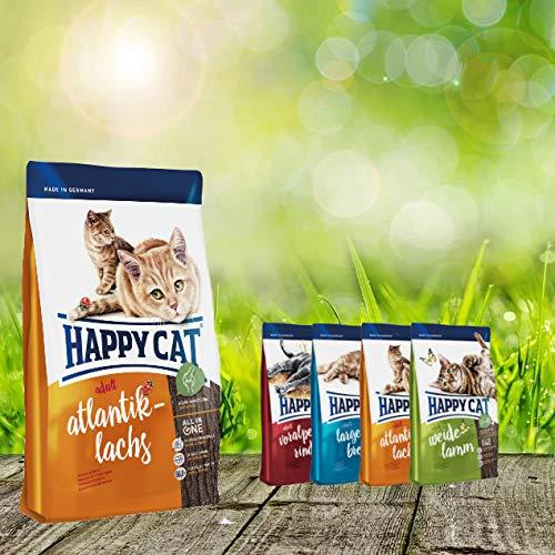 Happy Cat Atlantik Lachs 10 kg + 4X 300g Probierbox