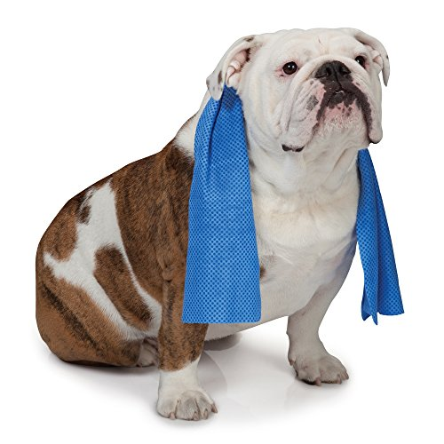 Cool Pup Dog Cooling Pet Towel
