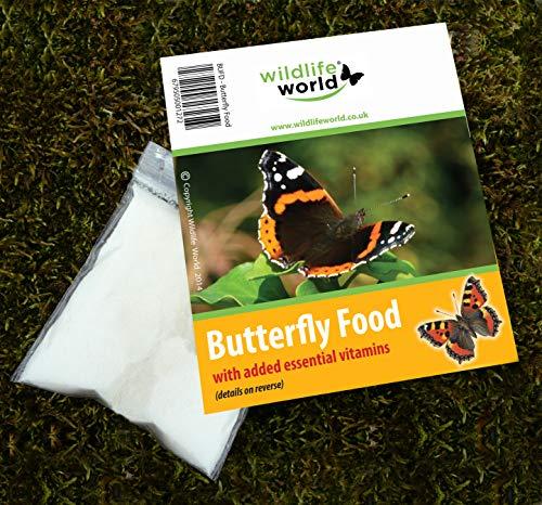Schmetterling Futter Vitaminen