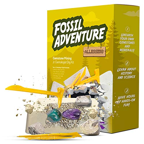 ALLESSIMO Fossil Adventure- Gemstone Mining Dig Kit, Complete Excavation Geology Science Toy Kits for Kids, Discover Real Gems, Educational and Fun Learning Adventure for Boys and Girls