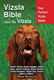 Vizsla dog breed Guide Covers Vizsla Puppies, Training, Health, Breeders, and More!