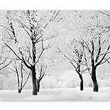 murando - Fotomural 350x270 cm - Papel tejido-no tejido - Papel pintado - naturaleza - 100403-164