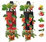 2 Pack Hanging Strawberry Grow Bags Planter-3 Gallons Gardens Upside Down Planter with 12 Grow Pouches Plant Growing Hanger Bag for Tomato, Chili Planting Containers Garden Grow Bags (Red + Black)