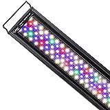 Led Aquarium Lightings - Best Reviews Guide