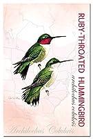 Tree-Free Greetings TFG66291 Ruby-Throated Hummingbird Eco Notes