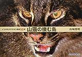 山猫の棲む島―イリオモテヤマネコ発見50年