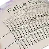 Scala 0.1 C Curl 120pcs 8-16mm to Choose Individual Lashes Black False Eyelash Natural Long Cluster Extension Makeup Beauty Health Makeup Fake Eyelashes (12mm)