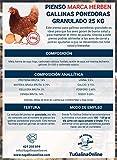 Pienso Granulado Gallinas Ponedoras, Saco de 25 Kg | Pienso de 1º Calidad, Rico en Nutrientes y Propiedades