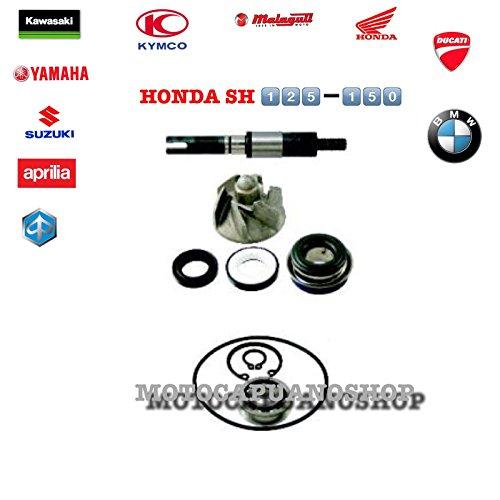 Set voor waterpomp Honda SH 125 150 150i 2007 2008
