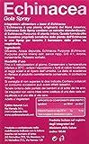 Zoom IMG-1 optima echinacea gola spray 20