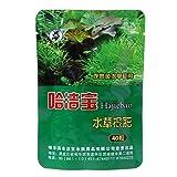 E-HONER 40 Pezzi di Fertilizzante per Radici acquatiche per Piante acquatiche Cilindro per Acquario condensato