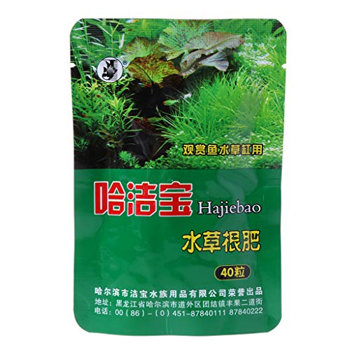 PENG 40 Stück Wasserpflanze Wasserwurzeldünger kondensierte Aquarium Zylinder