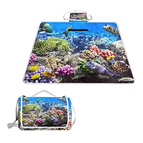 XINGAKA Picknickdecke,Lot Hurghada Riff Korallenfisch Rot Ägypten Tiere Wildlife Natur Ozean Aquarium Hawaii Under Wate,Outdoor Stranddecke wasserdichte sanddichte tolle Picknick Matte