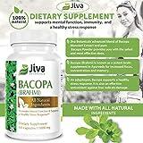 Bacopa Monnieri Capsules 1000mg High Potency Brahmi Advanced Bacopa Extract and Bacopa Powder Formula by Jiva Botanicals