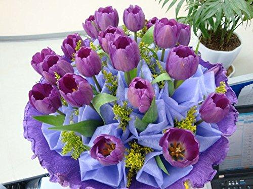 Toutes sortes de bulbes de tulipes belles fleurs de jardin sont appropriés pour les plantes en pot (il n'est pas une graine de tulipe) ampoules 2PC 24