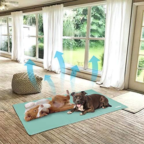 WISFORBEST Huisdier Koelmat, Zelfkoeling Hond Bed Niet-giftige Ijs Mat Wasbaar Zomermatras Pad voor Houd Uw Kennels Cool, Verkrijgbaar in 3 maten van M tot XL, XL(70x110cm)