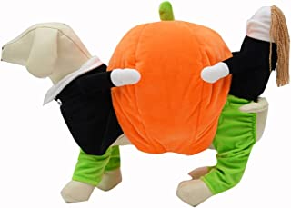 UEETEK Pet Clothes Funny Pumpkin Puppy Costume Dog Cat Carrying Pumpkin Fancy Costume Halloween Party Size S