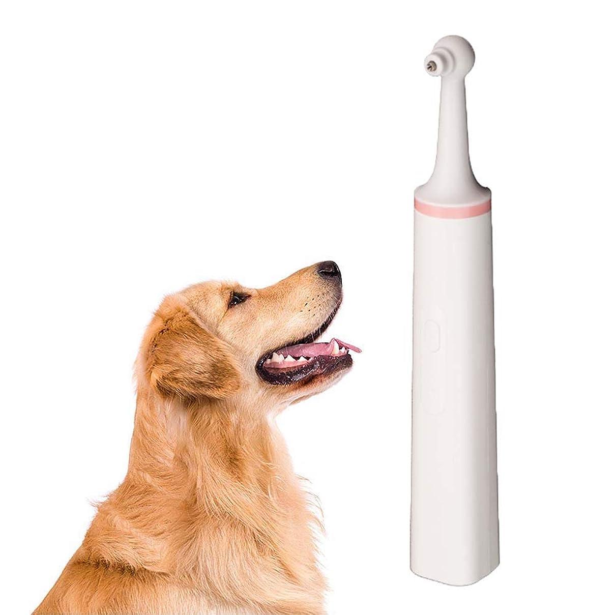 ジレンマ側面誇大妄想犬の歯ブラシ、ペット歯石除去器電動犬の歯石除去器歯のクリーナー子犬歯科スケーラーケアクリーニングツールキット,ピンク