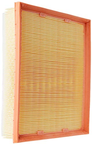 Original MANN-FILTER Filtro de aire C 25 109/1 – Para Automóviles