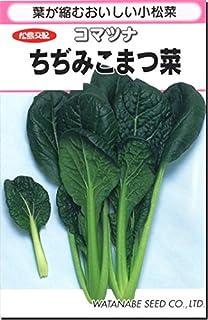 小松菜 種子 ちぢみ 小松菜 4.6ml