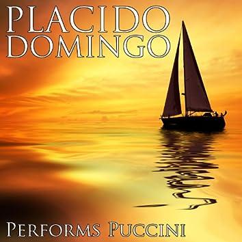 Placido Domingo Performs Pucinni