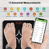Zoom IMG-1 bilancia pesapersone digitale professionale insmart
